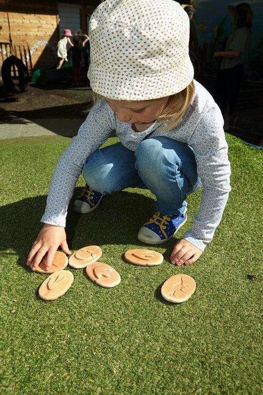 Let's Investigate - Dinosaur Footprints