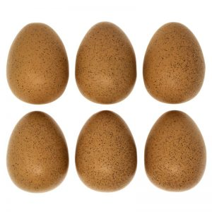 Sensory Sound Eggs