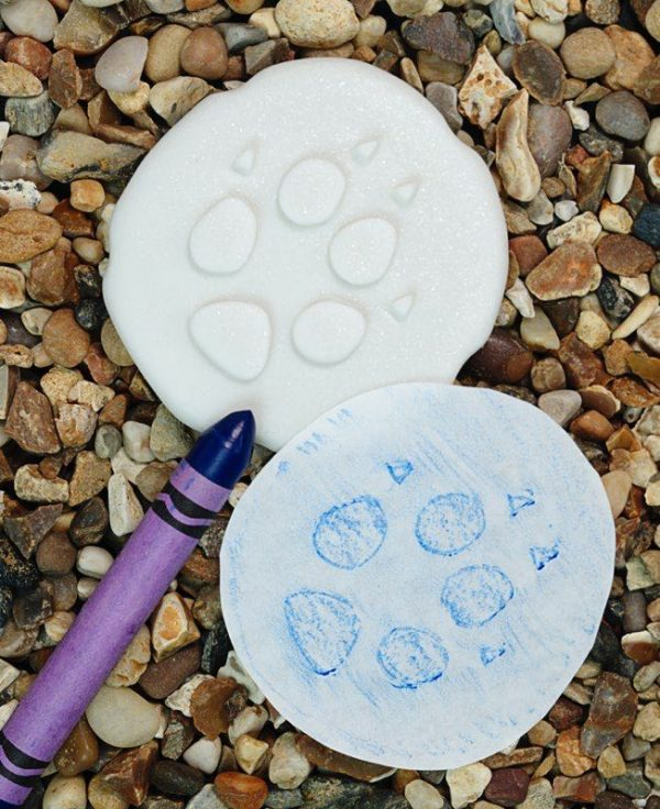 Polar Footprints