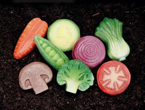 Sensory Play Stones Vegetables