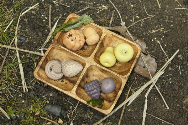Feast of Nature Play Set