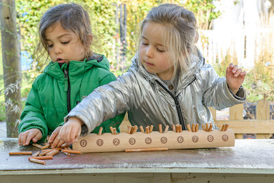 Natural Counting Log
