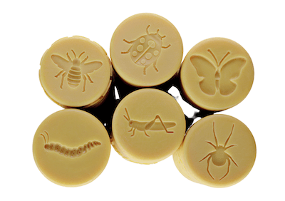 Let's Roll – Garden Bugs