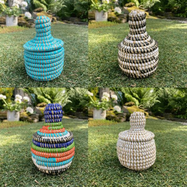 Curiosity Mini Pots
